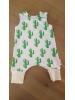 Harempakje cactus